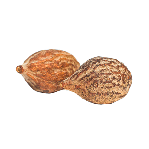 poudre-de-baheda